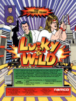 Lucky & Wild — 1993 at Barcade® in Detroit, Michigan | arcade video game flyer graphic